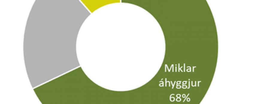 MIKLAR ÁHYGGJUR AF LESTRARKUNNÁTTU BARNA